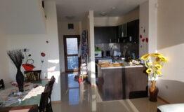 Villa F33. Hall with kitchen 2