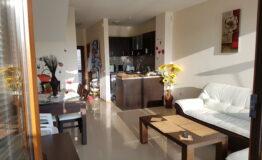 Villa F33. Hall with kitchen